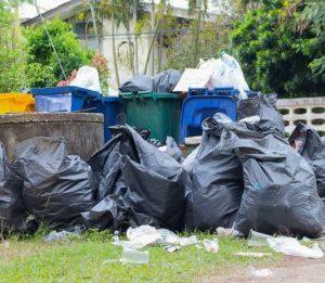 trash removal chandler az